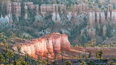 Hoodoos Basking in the Morning Sun - Sunrise Point - Bryce Canyon National Park (Jim Frazee) Tags: hoodoos morning sunrisepoint brycecanyonnationalpark