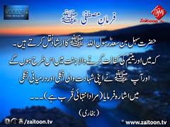 29-9-16) woodz-Recovered (zaitoon.tv) Tags: mohammad prophet islamic hadees hadith ahadees islam namaz quran nabi zikar