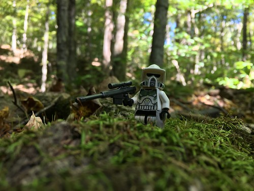 ARF Troopers always lead the way.