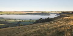 Swaledale Inversion (ChrisDale) Tags: chrisdale chrismdale cloud dawn fog haze hudswell inversion landscape marske mist morning northyorkshire northyorkshiredales richmond sunrise swaledale trees yorkshiredales