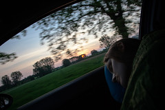 on the road 9 (rafaellobe) Tags: ontheroad road trees dawn asleep sleeping girl sky poland