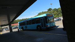 PAT Bus 5515 (Etienne Luu) Tags: portauthorityofalleghenycounty portauthority gillig advantage low floor