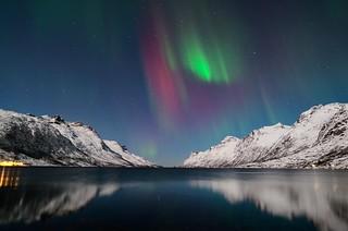 Red aurora borealis in Ersfjordbotn