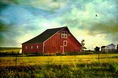 Red Barn--HSS! (keeva999) Tags: red fall texture barn rural nikon quilt farm barns iowa flypaper d3100
