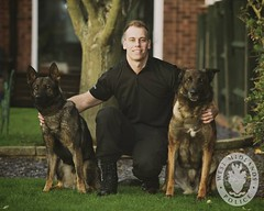 dog training puppy pc police canine hero brave westmidlands inspector heroic sergeant policedog janus trained policing pcso westmidlandspolice dogsunit