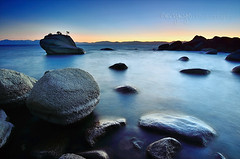 Bonsai Blue (Gary Ngo | Photography) Tags: usa nikon laketahoe bluehour longexpsoure d7000 bonsairock