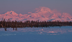 Gaint Awakes (Ed Boudreau) Tags: snow alaska morningsky conifer mountmckinely denalirange alaskamnts