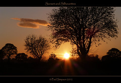 Sunset (Paul Simpson Photography) Tags: uk sunset england black silhouette evening image dusk postcard yorkshire silhouettes sunny images panasonic twigs sunnyday southyorkshire photosof imageof treessun photoof imagesof lumixtz30 paulsimpsonphotography