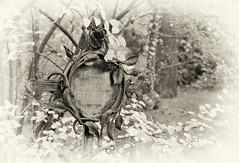 Spuren hinterlassen - vergessene Gräber (Reinhard_M) Tags: grab vergessen südwestkirchhofstahnsdorfsüdwestfriedhofsüdwestkirchhofwaldkirchhofvergessenegräber stahnsdorfcanon