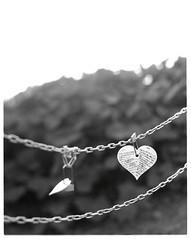 Love hurts (graflex45) Tags: bw film monochrome analog blackwhite bokeh anniversary d76 expired developed graflex speedgraphic ektar 7inch 4×5 aeroektar 178mm