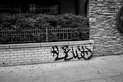 Lewy (36th Chamber) Tags: nyc graffiti tag lewy handstyle btm
