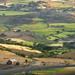 Ethiopia Mekelle to Lalibela IMGL3624.jpg