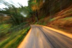Wales trip - Autumn road (Che-burashka) Tags: road uk autumn rain wales forrest kitlens valley midwales rhayader nikitosik olympus1250mm