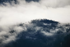 Wafts of Mist (Aerial Photography) Tags: autumn alps fog clouds austria tirol sterreich nebel herbst wolken berge alpen aut 15112006 5d015225