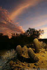 Three of a Kind (Eric Binns Photography) Tags: sunset arizona cactus southwest landscape desert barrel mesquite sonoran sonorandesert crescentmoon offcameraflash neutraldensityfilter pocketwizard amberdome