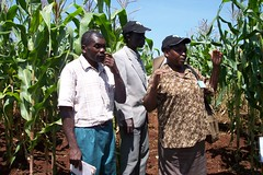 stakeholdermeeting-kisumu(2-3June2005) 004