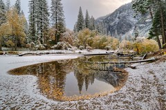 Merced reflection (Thankful!) Tags: winter reflection river yosemite yosemitenationalpark sierras backwater freshsnow mercedriver beautyofwater