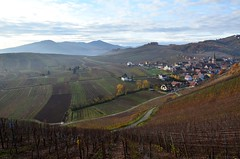Niedermorschwihr (Philippe Haumesser Photographies) Tags: autumn france mountains nature automne landscapes village vineyards alsace vignes paysages vosges elsass montagnes niedermorschwihr nikond7000 flickrstruereflectionlevel1 rememberthatmomentlevel1