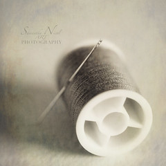Thread The Needle! (Samantha Nicol Art Photography) Tags: life macro texture thread square still dof natural bokeh needle samantha nicol