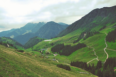 hinter den bergen (kara o'keefe) Tags: trees lake mountains green clouds austria sterreich nebel cattle cows hiking path fields bergen grn bume khe