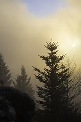 Les cimes du Jura au petit matin 03 (Patrick d'Alsace) Tags: france patrick jura brouillard fort brume zaugg patrickzaugg