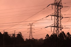 transmission (keith midson) Tags: lines power tasmania westcoast transmission piemanroad