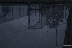 rain (alamond) Tags: reflection rain weather canon 7d usm cry ef 1740mm 1740 f4l llens