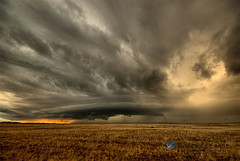 California Mothership (Robert Pearce Photography) Tags: california ranch november winter sunset cloud storm grass rain landscape gold nikon cattle gray sigma wideangle thunderstorm mothership graze giottos nikond200 robertpearce robertpearcephotography indurophq3