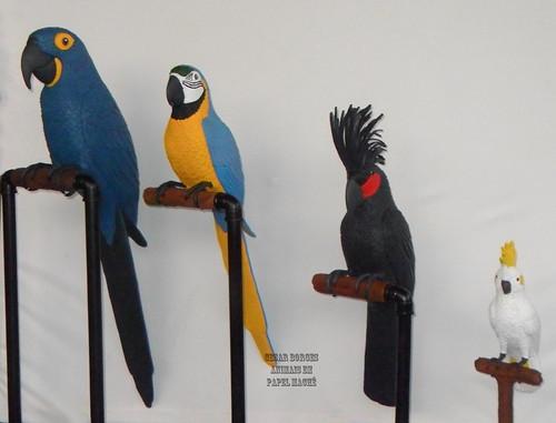 Papagaiada