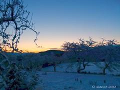 winter has come (7) (skistar64) Tags: morning winter krnten carinthia wintertime morgen pisweg daham drausen winterbeginn