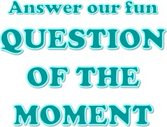 Answer Our Fun Question of the Moment (Enokson) Tags: november blue school winter signs film window television sign movie fun reading book tv student december notes you teal library libraries board watch read note story displays question signage novel schools bulletinboard moment would interactive bulletin 2012 rather juniorhigh participation librarydisplays librarydisplay wouldyourather studentparticipation teenlibrary juniorhighschools schooldisplay middleschoollibrary december2012 middleschoollibraries schooldisplays teenlibraries november2012 signslibrary vblibrary juniorhighlibraries juniorhighlibrary enokson winter2012 librarydecoration questionofthemoment jenoksondisplay enoksondisplay jenoksondisplays enoksondisplays