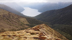 South Fiord of Lake Te Anau (blue polaris) Tags: park new travel summer mountain lake landscape island spring scenery track hiking walk south great conservation olympus hike zealand alpine national nz te anau doc tussock tramping department kepler manapouri tramp omd fiordland em5