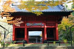temple gate. (cate) Tags: autumn temple gate autumncolors