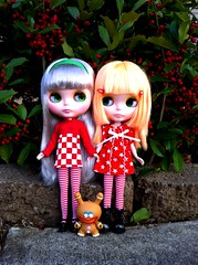 Holiday Dresses (welovethedark) Tags: christmas red holiday green toys doll dolls holly kidrobot rue dunny prim iphone arttoys takarablythe blythedolls holidaydresses iphonephoto iphonecamera gingerdunny simplymangoblythe kissmetrueblythe kidrobotholidaydunny