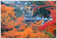 20121126_6874a_ (Redhat/) Tags: autumn fall japan maple kyoto redhat