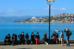 Wellington Harbour (Wildlife_Biologist) Tags: people human homosapiens humanbeing group wellington nz newzealand wellingtonharbour wellingtonharbor water jeffahrens wildlifebiologist