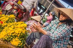 Vietnam 2016-64 (mathur7) Tags: vietnam hanoi hoian street markets lagoons backwaters lakes river lanterns vacation holiday sapa rains sunsets halongbay beach ocean limestone rocks cliffs boats traveling tripping light magic culture