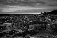 Hoodoo Forest (Karl Outdoor Photography) Tags: alberta dry hoodoos badlands sandstone writingonstoneprovincialpark blackandwhite