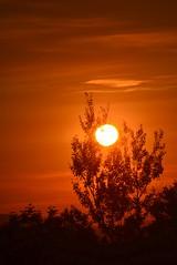2016_0824Sunset0002 (maineman152 (Lou)) Tags: sunset settingsun hotsun sky skycolor skycolors skydrama skyscene skyscape skyview summersky nature naturephoto naturephotography landscape landscapephoto landscapephotography summer august maine