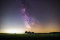 Dreamscape (wetography) Tags: milky way trees sony sigma a7s wudefield astrophotography astro astronomy stars