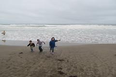 DSC_0293 (rlnv) Tags: california bayarea sanfrancisco nikond3300 1855mmf3556gvrii oceanbeach beach walter caitlin toms