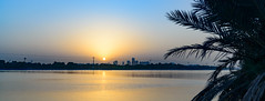 Sunset - Grand Hayat Dubai (Aleem Yousaf) Tags: ilobsterit nikon d800 photo walk sunset creek grand hayat dubai united arab emirates palm tree reflection silouhette waterfront