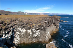 Coastal Cliffs_4603 (hkoons) Tags: snaefellsnespeninsula country iceland birds cliff countryside feathers flight fly island landscape nest nests north outdoors wings