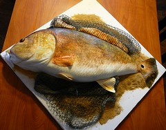 Texas Redfish Groom's Cake (Cake Doctor, LLC) Tags: wedding red fish scale cake groom texas drum chocolate shrimp doctor butter scales peanut hook fin llc grooms redfish fins lure fondant cakedoctor