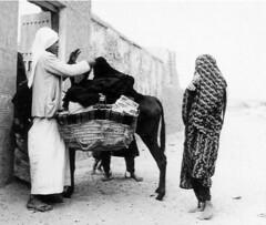 39388197fPQJjY_ph (veiledb) Tags: veiled veil muslim hijab