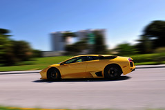 Loquacious Lambo [EXPLORED] (Winning Automotive Photography) Tags:
