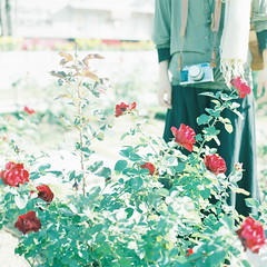 (kajico**) Tags: people flower 120 film girl rose square hasselblad freind fuji400h