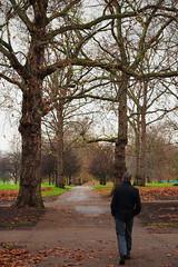 (making) Decisions (chinasky1975) Tags: uk autumn trees london hojas arboles camino path greenpark londres otoo leafs decision decisions decisin decisiones mygearandme