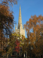 IMG_1881 (Sharky8572) Tags: autumn cathedral norfolk engine autumnleaves autumncolours norwich eastanglia autumnsun