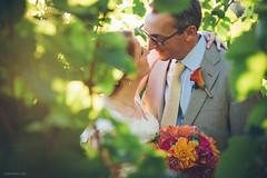 Lisa & Steve / Vista Hills Winery Wedding